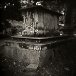 Holga Study of Corams Field Park, London by Christopher John Ball